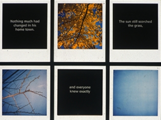 Polaroid Story Grids